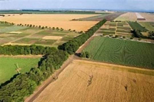 Мэрии Уфы потребовали вернуть 23 гектара земли