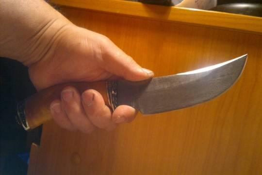 ВБашкирии мужчина ранил ножом сожительницу ипытался уничтожить себя