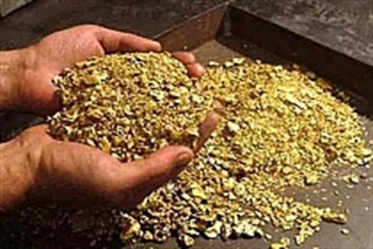 ВБашкирии золотодобывающее предприятие задолжало сотрудникам 1 млн руб.
